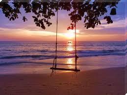 swing-under-tree.jpg